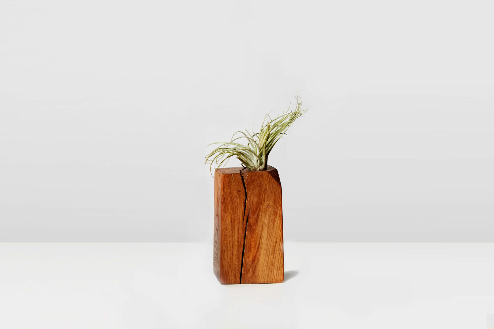 https://www.delapalma.eco/wp-content/uploads/2018/09/block-airplant-roble.jpg
